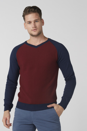 Textured Sweater with V-Neck and Raglan Sleeves